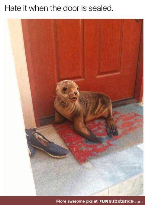 Sealed door
