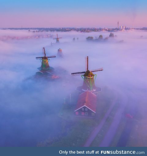 Magic morning in the Netherlands with windmills rising from the fog
