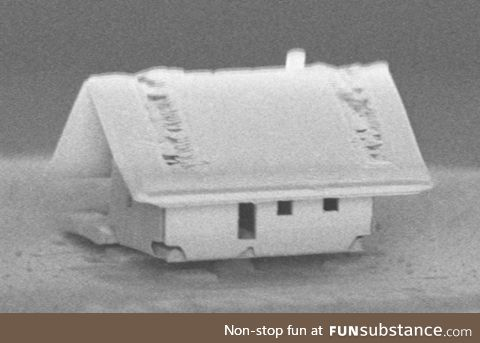 The world's smallest house - assembled inside a scanning electron microscope's vacuum
