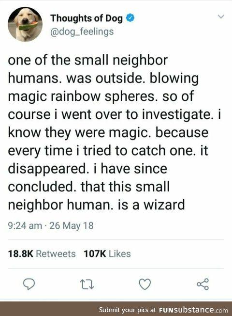 Human does magic