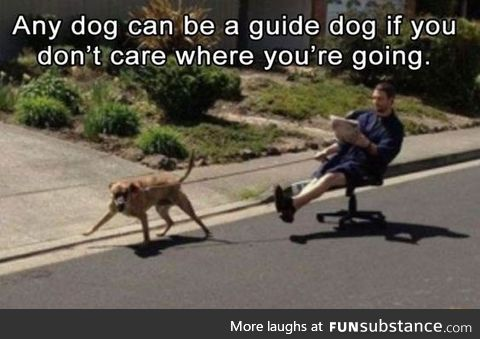 Automatic guide dog