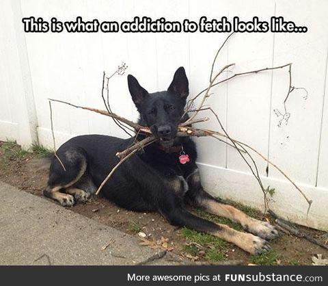 Stick me