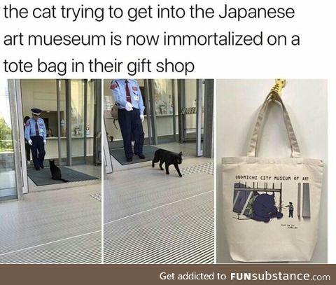 Cat are really gods