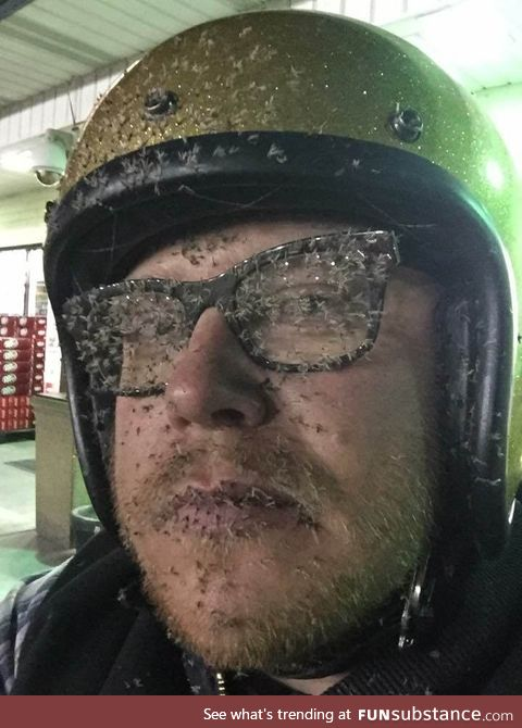 When you hit a cloud of mosquitos without a full face helmet