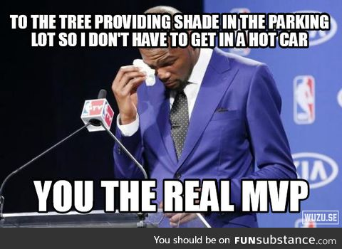 Thank you trees