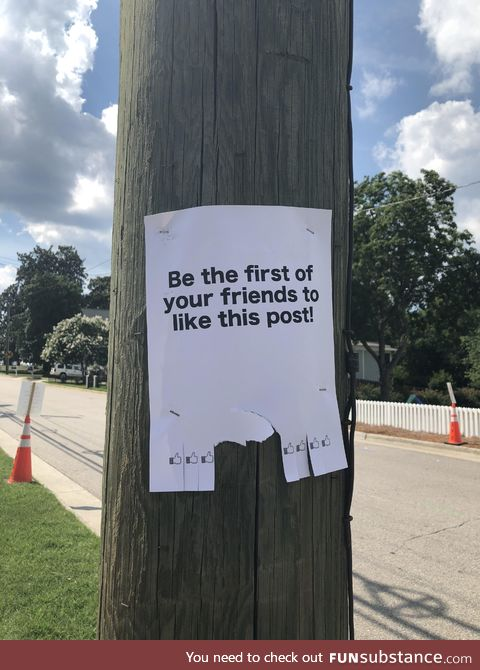 Found on a power line post