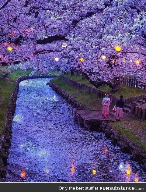 This photo of Saitama, Japan looks like a Van Gogh painting