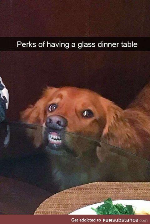 Perks of having a glass dinner table