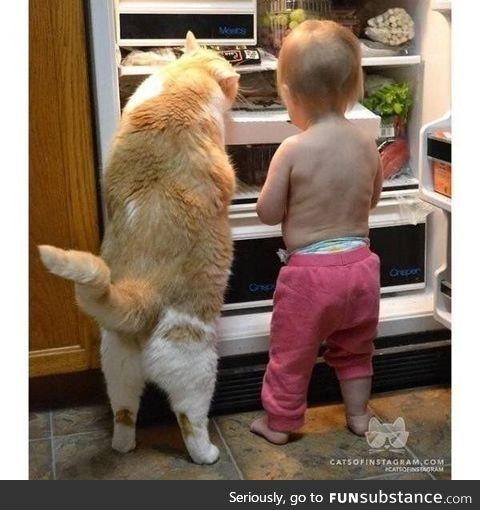 Partners are looking for food