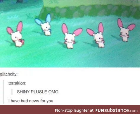 Omg shiny...wait....