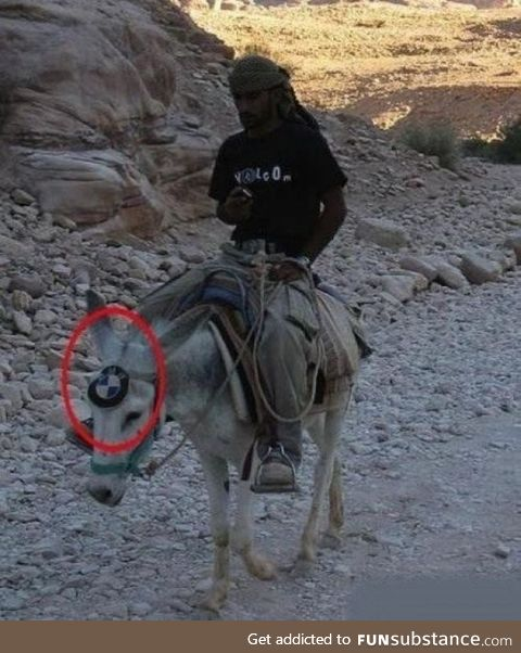 BMW launched donkeys as well. LOL!!