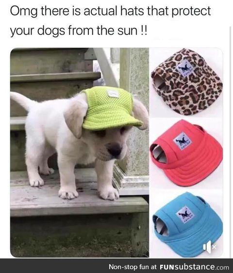 Cap here
