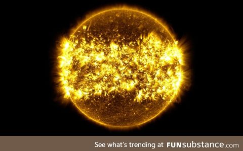 A Year's Worth of Solar Activity in One Picture