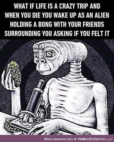 Not gonna take that shit again fam! That shit ain't good blunt!