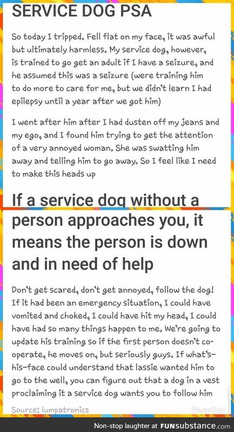 PSA: How to deal with a service dog