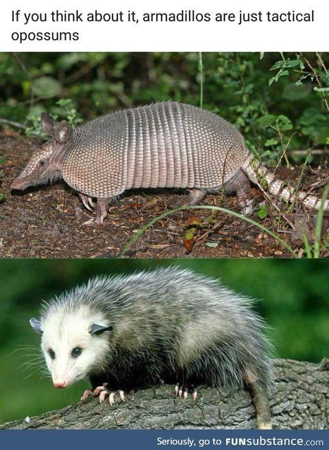 Tactical opossums