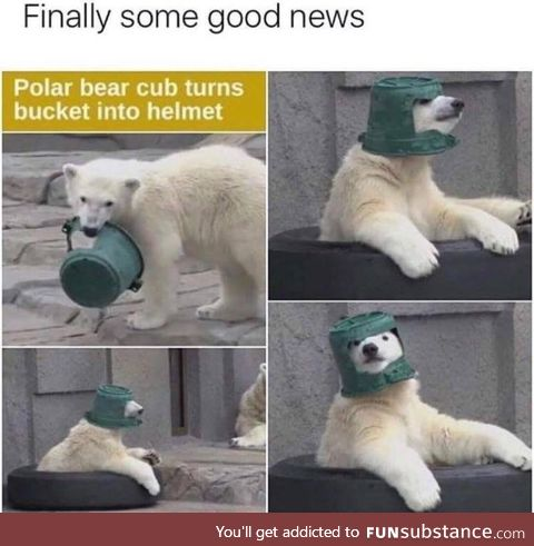 The best of news