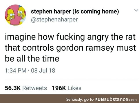 That's one angry rat
