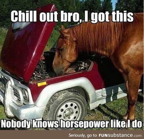 Checking the horsepower