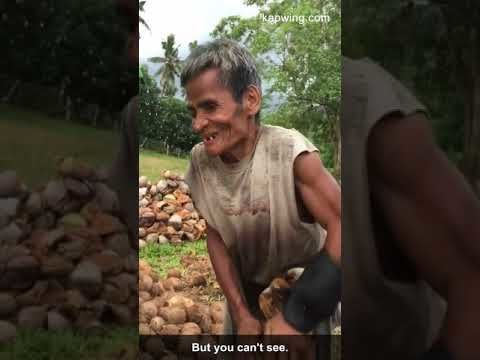Old blind man dehusks coconuts for a living