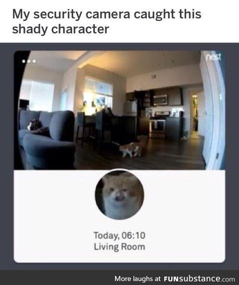 Shady character