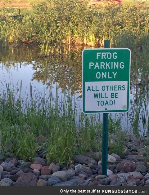 No sign of Kermit T. Frog