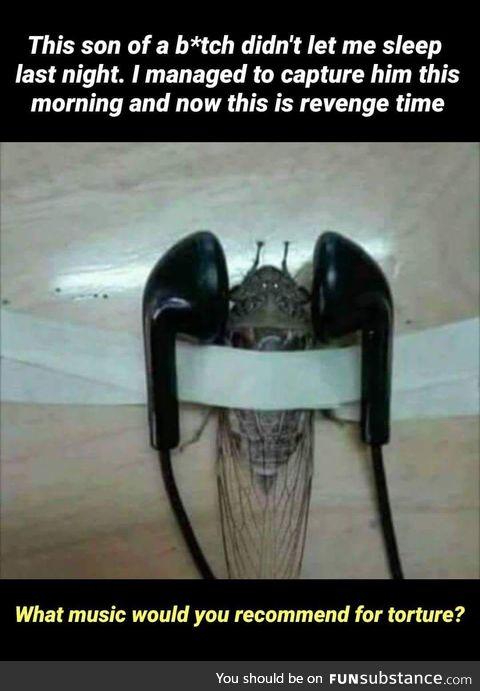 Revenge done right