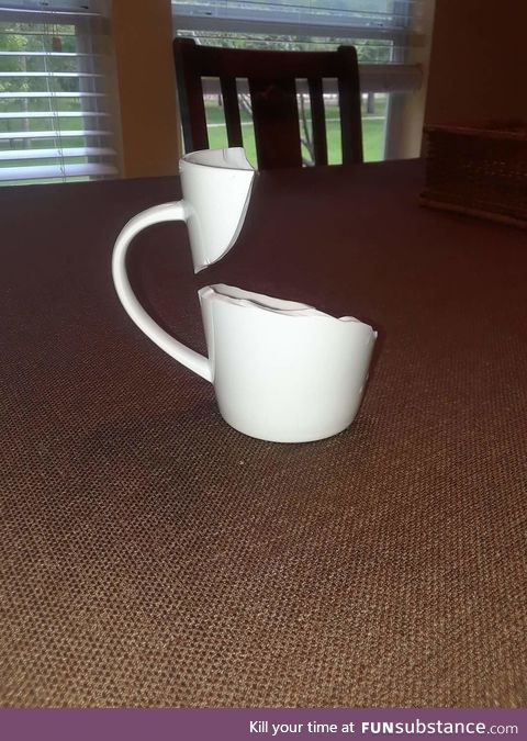 The way this cup broke
