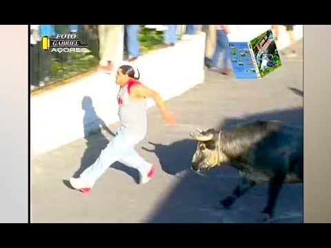 People f*cked up by bulls the mini series