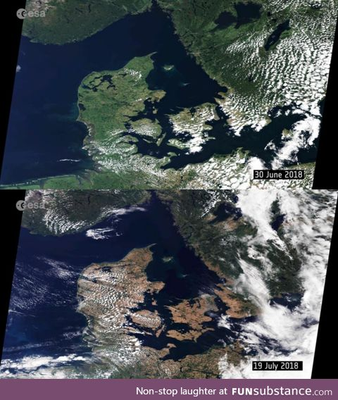 The European heatwave as seen from space