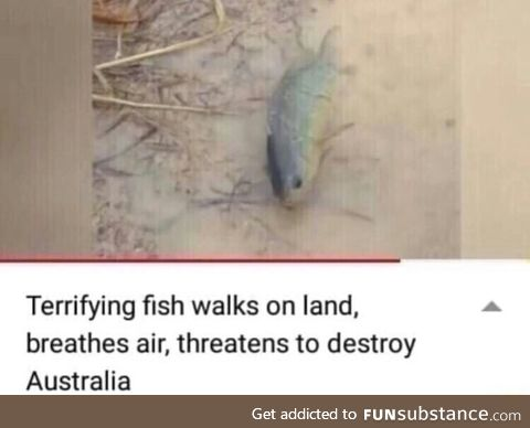Only in Austrailia