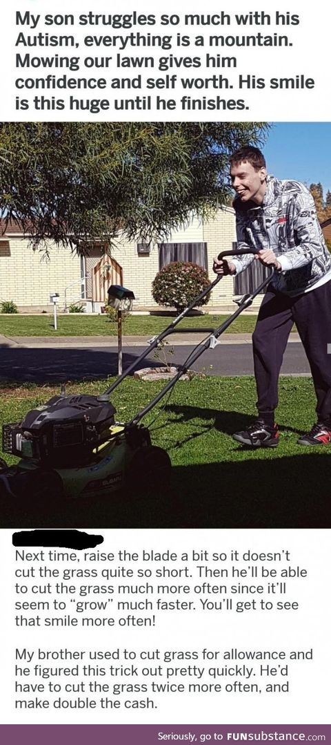Commenter  giving wholesome lawn care advice