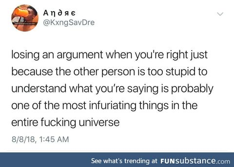 When arguing with an idiot, no one wins