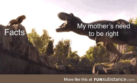 Facts vs mom