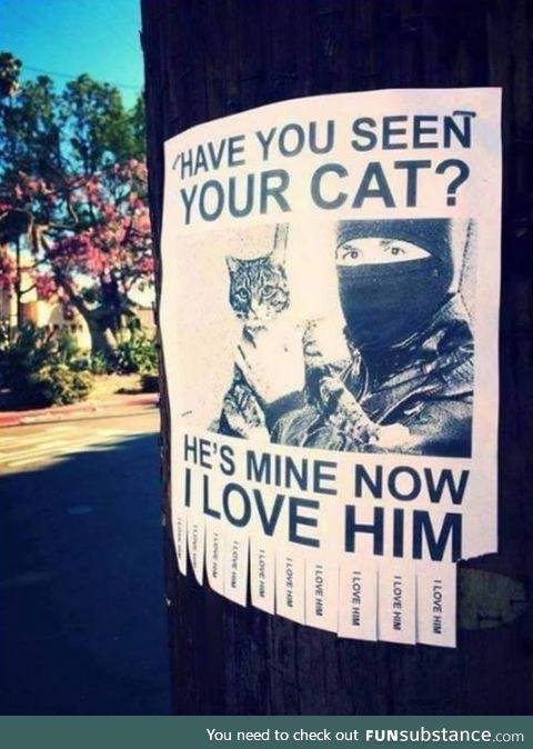 Lost cat. Found cat