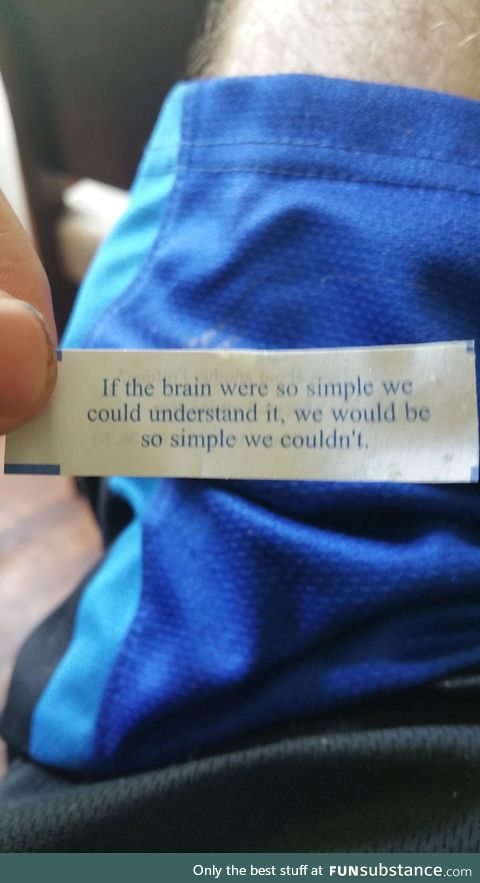Whoever wrote this fortune was definitely stoned