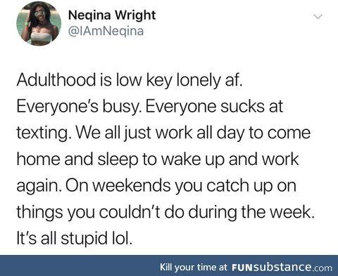 Adulthood sucks