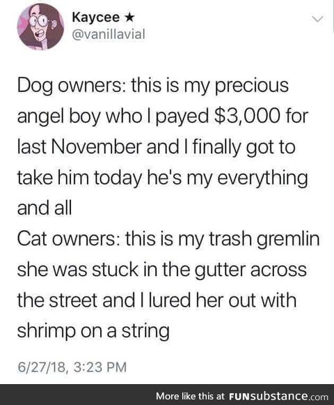 Dog/cat owners