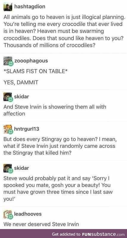 He would have been so disappointed in the idiots killing stingrays in his name