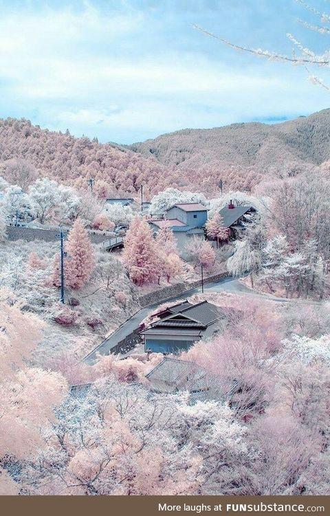 Mount Yoshino in Japan