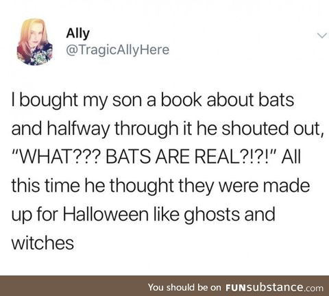 PSA: Bats are real