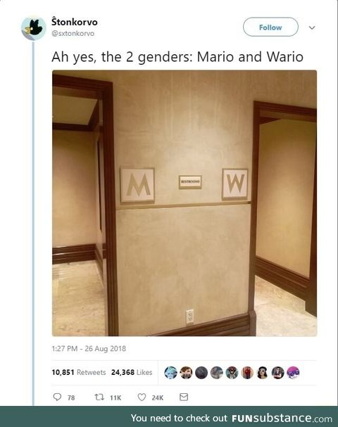 The 2 genders