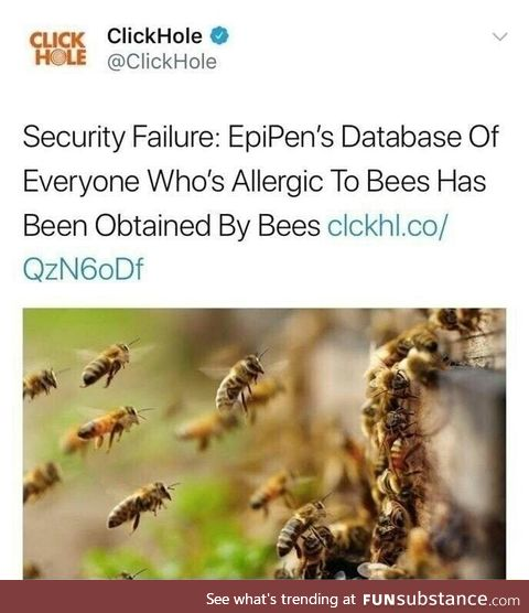 The bees are on to something