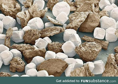 Salt and pepper under an electron microscope look like marshmallows and graham crackers
