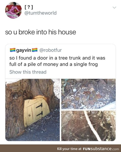 Frog built a house