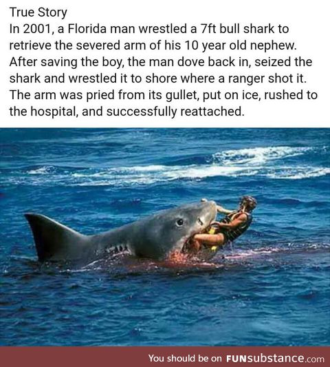 Why doesn't any post starting with 'A Florida Man' ends normally?