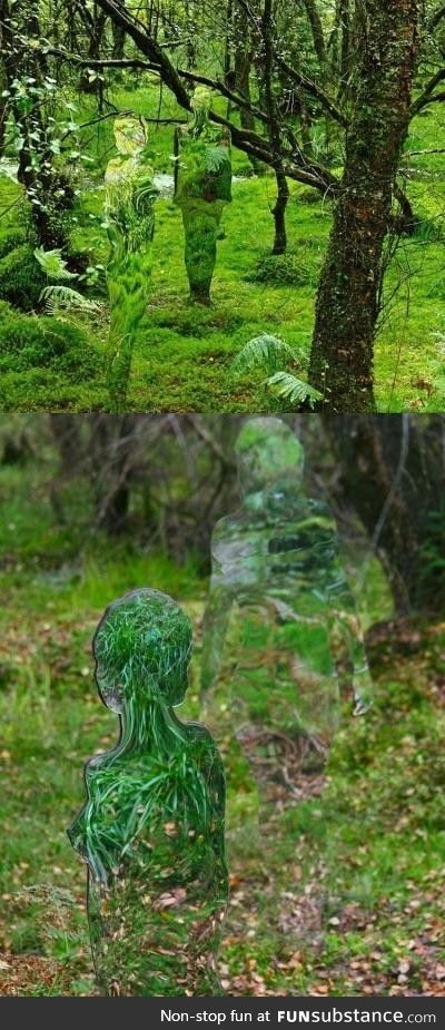 Imagine walking through a forest and catching a glimpse of these invisible figures!