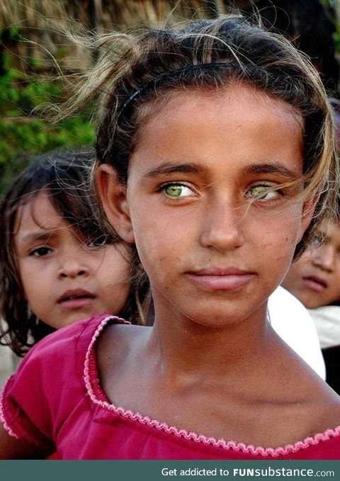 The green eyes of the Afghans