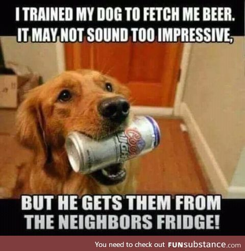 Training the dog to fetch beer