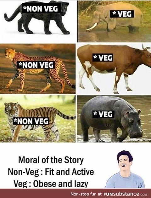 Non-vegan vs vegan